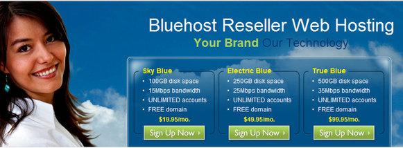 Bluehost推出Reseller主机